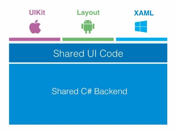 Xamarin, the cross-platform app development platform – Calpine Blog
